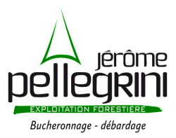 logo-etf-pellegrini-jerome